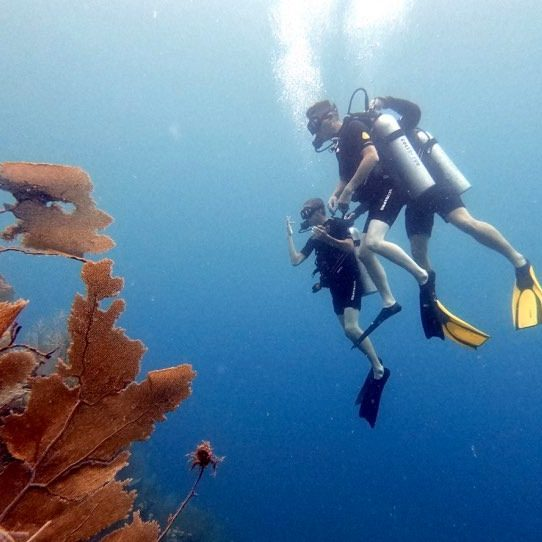 Discover Scuba Diving with Instructor AJ
