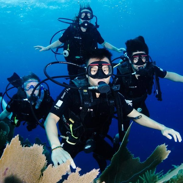 Open water diver students in from of a coral