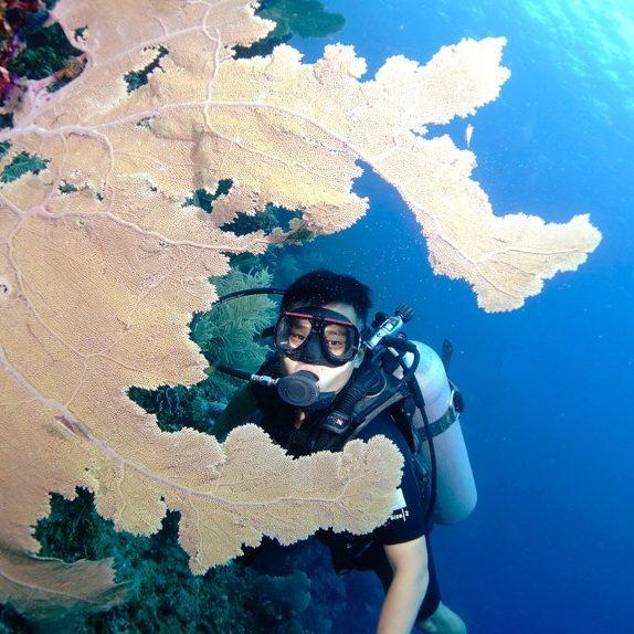 Open Water Diver 4